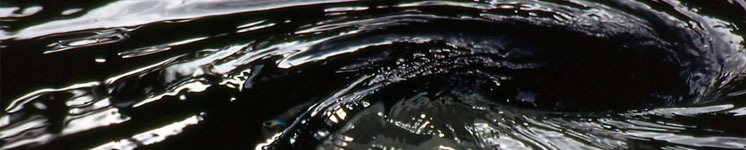 15848 medium image 47667